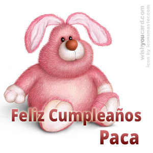 happy birthday Paca rabbit card