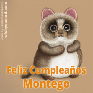 happy birthday Montego racoon card