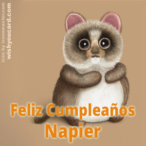 happy birthday Napier racoon card